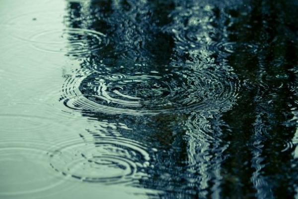 放置すると危険!雨漏りが招く二次被害から知る屋根塗装の必要性